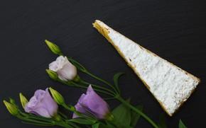 Картинка цветы, сыр, Эустома