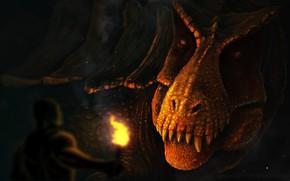 Картинка взгляд, морда, дракон