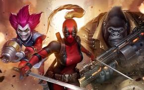 Картинка персонажи, Lady Deadpool, Комиксы Marvel, Marvel: Future Fight