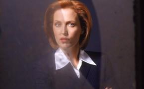 Картинка сериал, The X-Files, Секретные материалы, Джиллиан Андерсон, Дана Скалли