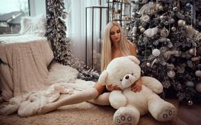 Картинка девушка, подарок, игрушка, мишка, Новый год, ёлка, Николай Кашуба