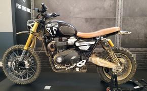 Картинка bike, triumph, motorbike, 1200, scrambler
