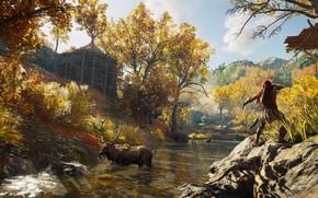 Обои лес, деревья, болото, лось, ассасин, Assassin's Creed Odyssey