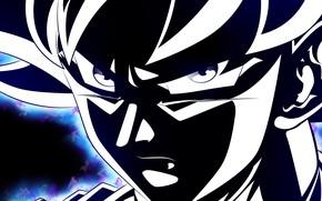 Картинка лицо, парень, Dragon Ball, Драконий жемчуг, чёрный силуэт
