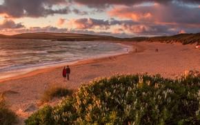 Картинка песок, море, волны, пляж, лето, небо, облака, пейзаж, закат, цветы, люди, холмы, берег, растительность, вечер, …