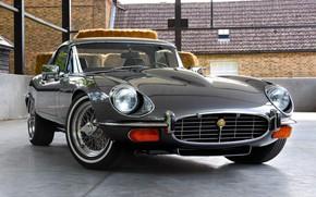 Картинка Jaguar E-Type, Хром, Классический автомобиль
