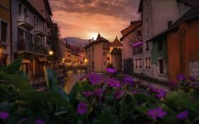 Картинка цветы, город, Франция, дома, вечер, канал, Аннеси