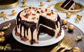 Картинка шоколад, торт, орехи, крем