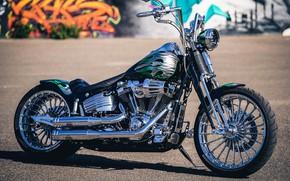Картинка Harley Davidson, Harley-Davidson, Custom, Chrome, Motorcycle, Thunderbike, By Thunderbike, Flamos