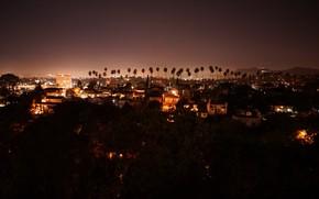 Картинка звезды, город, пальмы, дома, фонари, красиво, ночной город, суета, фонари ночь, вид сверх, гулять ночью, …