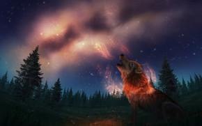 Картинка ночь, природа, волк, фэнтези, млечный путь, воет, by CreeperMan0508