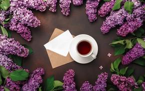 Картинка цветы, flowers, сирень, romantic, coffee cup, spring, purple, lilac, чашка кофе