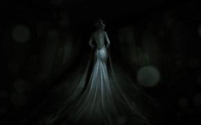 Картинка Девушка, Платье, Демон, Fantasy, Ghost, Art, Ужас, Фантастика, Women, Horror, Illustration, Хоррор, Creepy, RAY 84, …