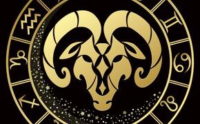 Картинка чёрный фон, знак зодиака, овен