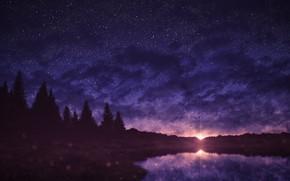 Картинка закат, природа, ели, водоем, звездное небо