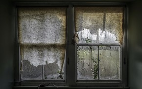 Картинка дом, окно, занавески, натурализм