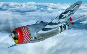 Картинка Thunderbolt, USAF, Истребитель-бомбардировщик, Вторая Мировая Война, P-47D Thunderbolt, P-47 Thunderbolt, Republic P-47D Thunderbolt