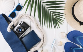 Картинка самолет, отпуск, очки, ракушки, сумка, паспорт