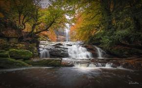Картинка water, autumn, waterfall