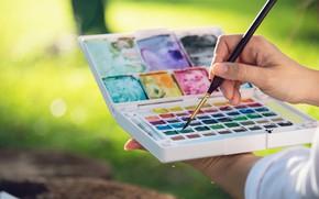 Картинка краски, руки, акварель, живопись, кисть, рисование