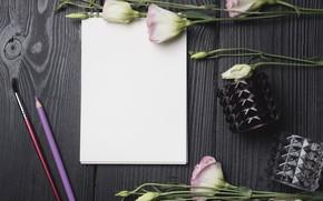 Картинка цветы, букет, блокнот, эустома