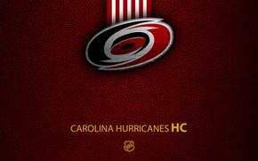 Картинка wallpaper, sport, logo, NHL, hockey, Carolina Hurricanes
