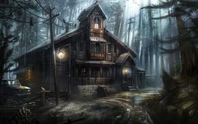 Картинка дом, провода, ели, чаща, фонарь, вороны, лужи, автомобиль, ливень
