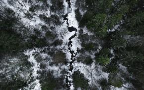 Картинка зима, лес, снег, деревья, пейзаж, природа, река, вид сверху