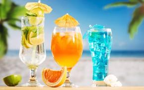 Картинка лед, море, пляж, отдых, Коктейль, напитки