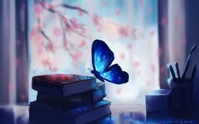 Картинка fantasy, magic, art, butterfly, macro, glare, books, miscellaneous, blurred background