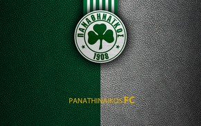 Картинка wallpaper, sport, logo, football, Greek Super League, Panathinaikos