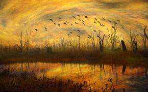 Картинка осень, небо, трава, вода, облака, свет, деревья, полет, пейзаж, закат, птицы, оранжевый, ветки, желтый, природа, …