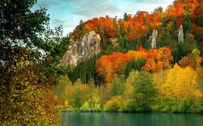 Картинка река, скалы, краски осени