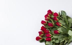 Картинка фон, розы, букет, бутоны
