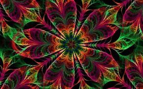 Картинка цветок, узор, фрактал, симметрия