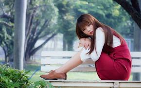 Картинка девушка, скамейка, дерево, милая, girl, азиатка, asian, cute