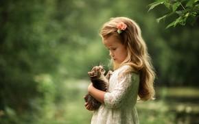 Картинка кошка, взгляд, котенок, платье, девочка