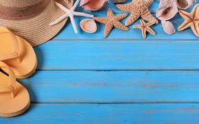 Картинка море, пляж, шляпа, Лето, морская звезда