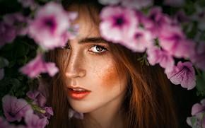 Картинка взгляд, девушка, цветы, лицо, Tomas Bark