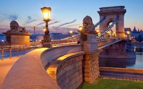 Картинка дорога, мост, река, вечер, фонари, light, львы, статуи, river, evening, Венгрия, Будапешт