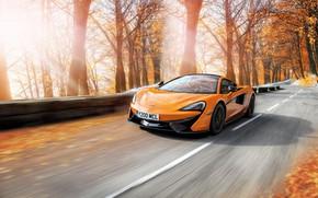 Картинка дорога, осень, деревья, оранжевый, McLaren, скорость, мчит