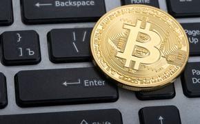 Обои лого, клавиатура, валюта, keyboard, bitcoin, биткоин