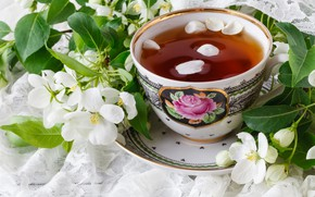 Картинка цветы, ветки, чай, весна, лепестки