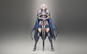 Картинка Girl, Fantasy, Beautiful, Sexy, Art, Style, Knight, Minimalism, Sword, Characters, Armor, Figure, Bageumi, Knights Templar