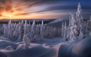Картинка Russia, Taganay national park, Ural, Sunrise