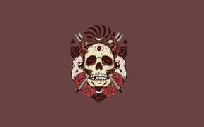 Картинка череп, розы, рога, черепа, стрелы