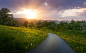 Картинка дорога, лето, деревья, закат, Markus Stauffer