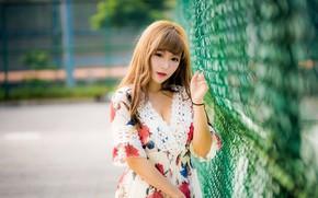 Картинка девушка, азиатка, милашка, боке