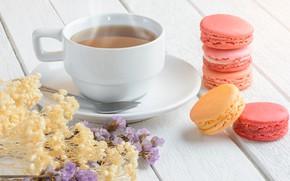 Картинка цветы, colorful, десерт, pink, flowers, пирожные, cup, сладкое, sweet, dessert, tea, bright, macaroon, french, macaron, …