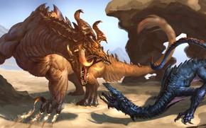 Картинка драконы, фэнтези, пара